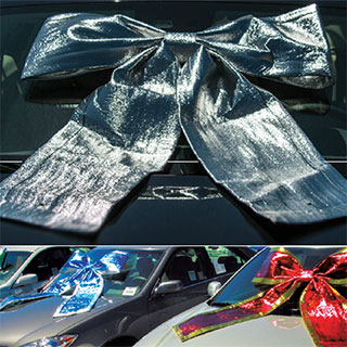 Shiny Giant Car Bows